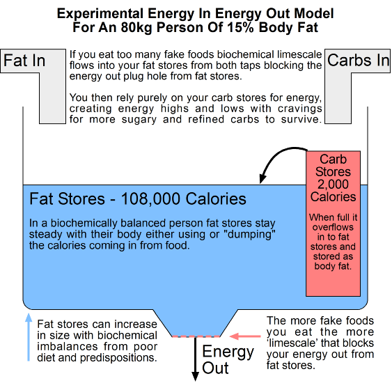 Experimental Energy In Energy Out Model For An 80kg Person Of 15% Body Fat