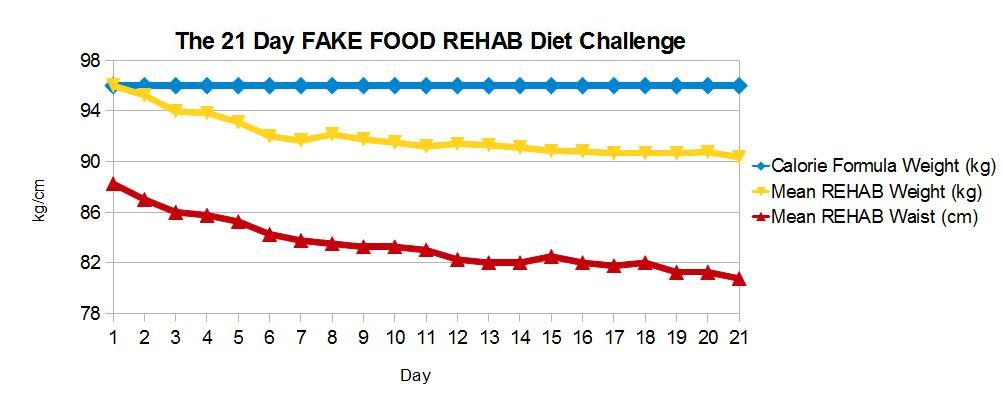 FAKE FOOD REHAB Day 21